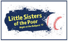 2017 LSP RailRiders Baseball Fundraiser Web Button--07-17